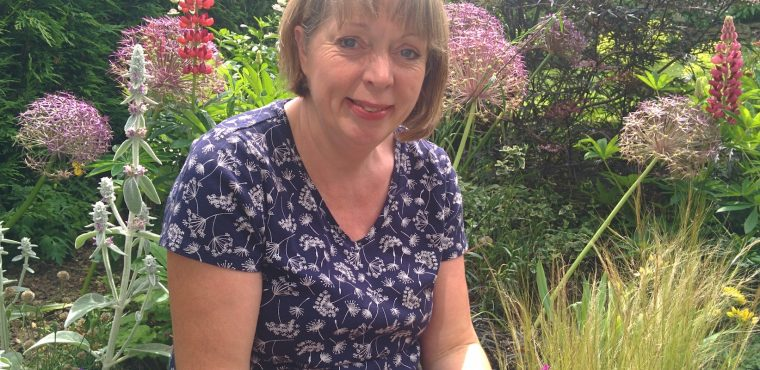 Gardening therapy benefits Sheffield care home residents