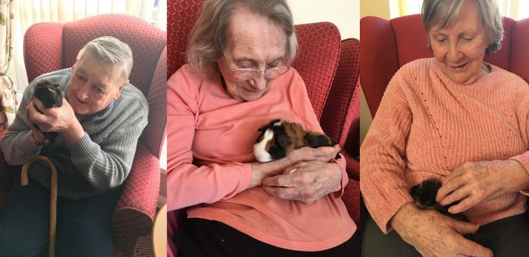 Pets charm residents at Teesside care home