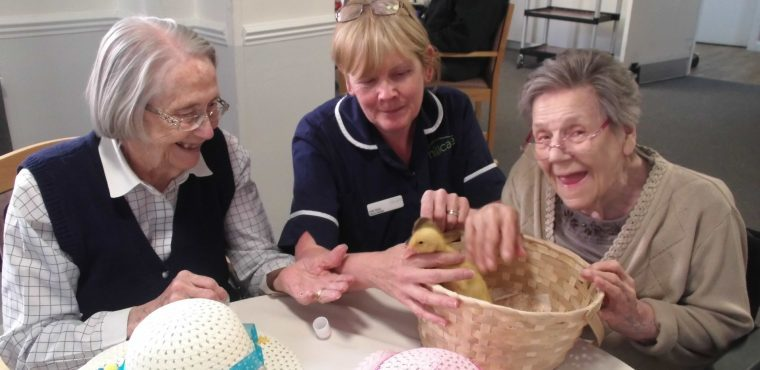 Easter miracle as ducklings hatch at care home
