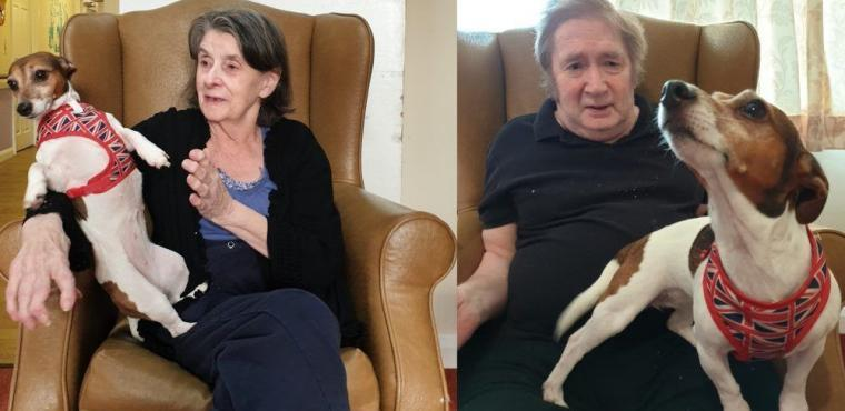 Dogs and cats visit residents on National Love Your Pet Day