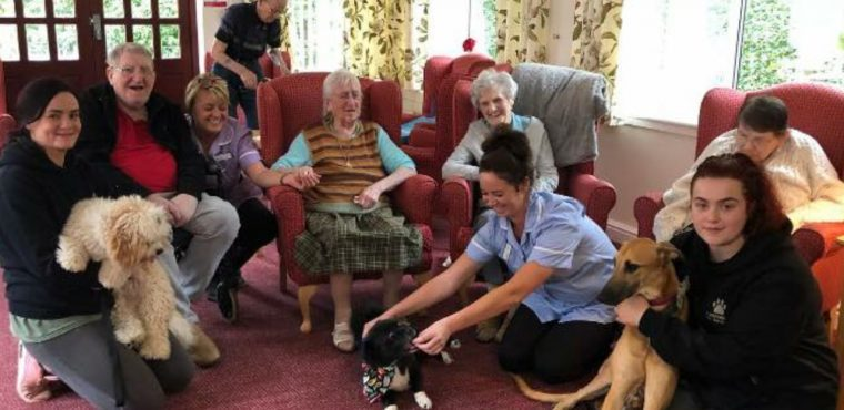 Care home enjoys Furnominal visit from pet pooches