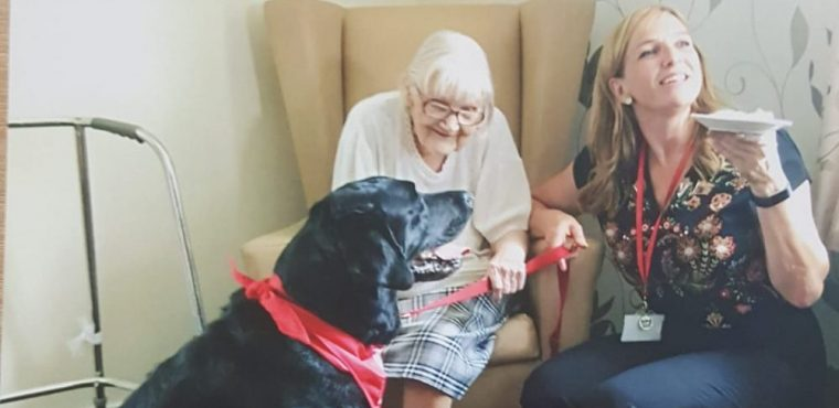 Canine companion brings joy to care home residents