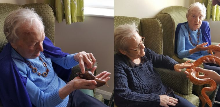 Slimy snails and slithering snakes visit Deangate Care Home