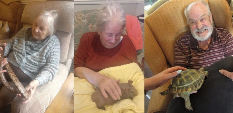 Menagerie make unlikely friends with care home residents