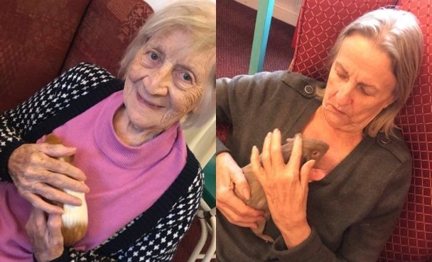 Sandiacre care home's guinea pigs a hit with residents