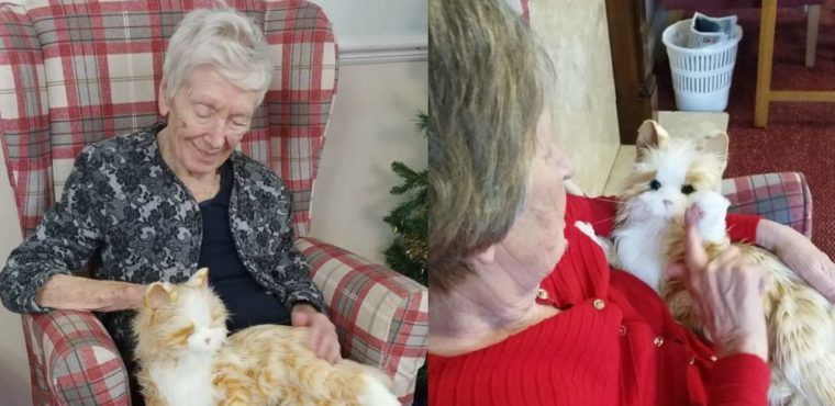 """Therapy cat"" helping elderly with dementia"