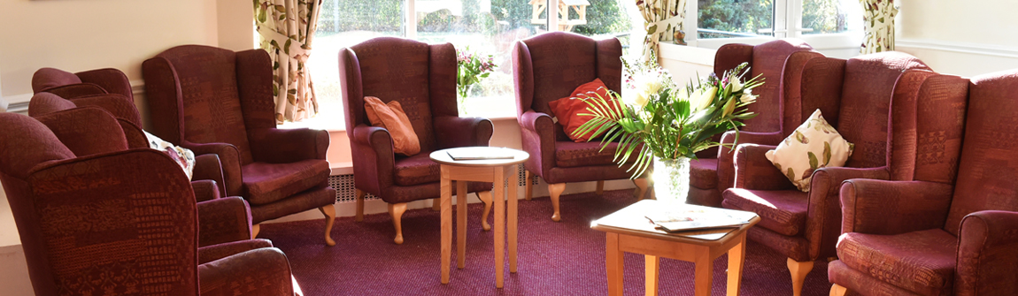 Nice & cosy brown chairs